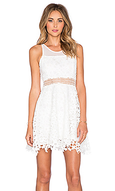 X Revolve Play Date Fit  Flare Dress